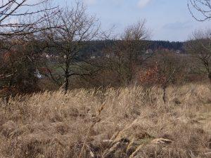 Původní stav lokality